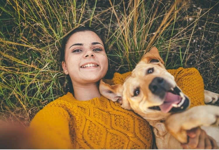 Keeping your dog happy while you're away