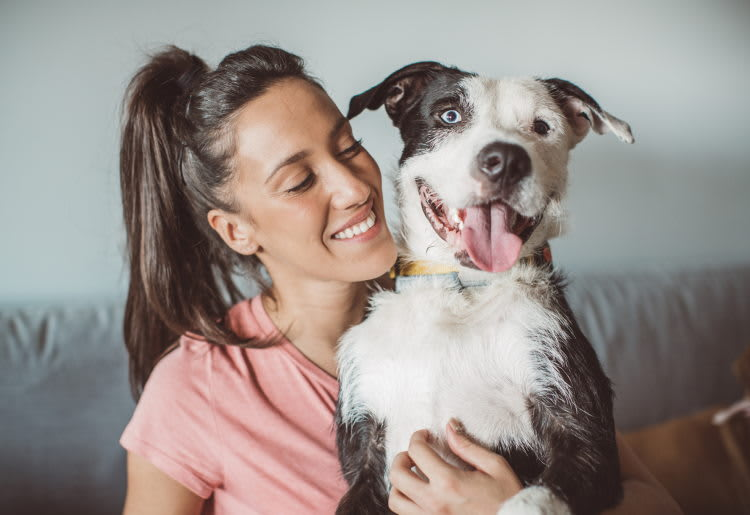 Top 10 Errors All Pet Owners Make and How You Can Avoid Them