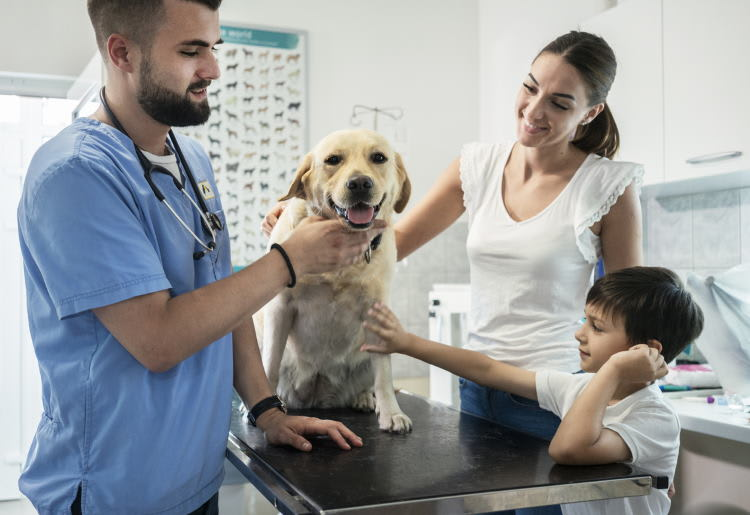Top 10 Signs the Pet You Love May Need Veterinary Treatment
