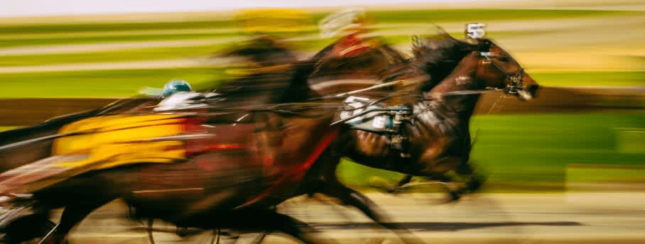 HORSE RACING BETTING TYPES IN AUSTRALIA - HOW TO PLACE A BET