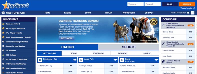 Merlehan betting on sports best odds in sports betting