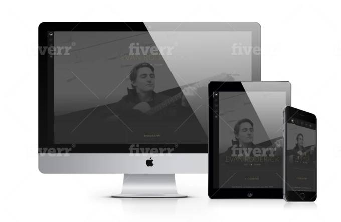 Website designed by Fiverr designer