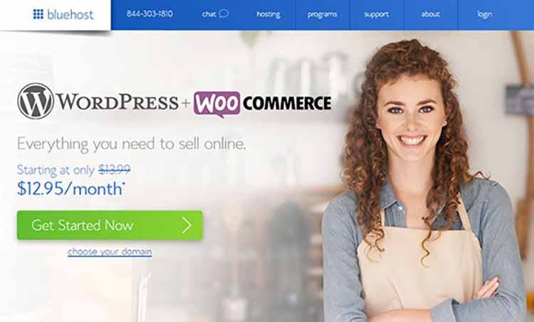 BlueHost/WooCommerce website