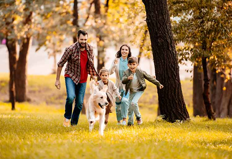 Health IQ Life Insurance Review
